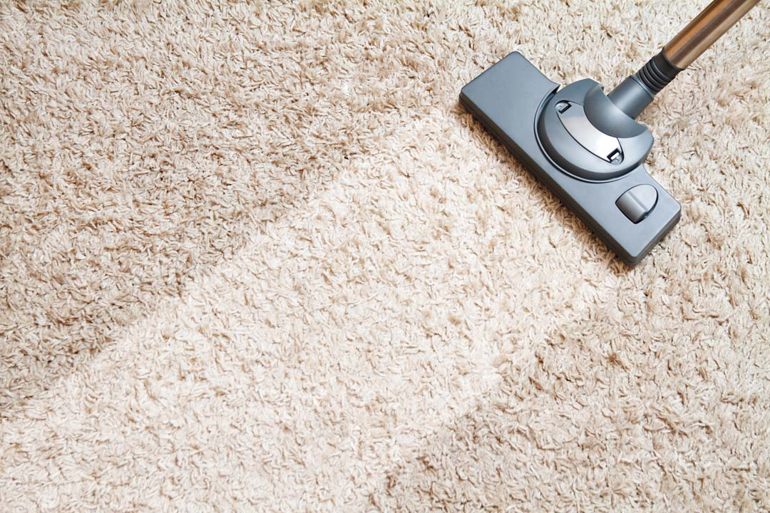 falcon co carpet cleaning