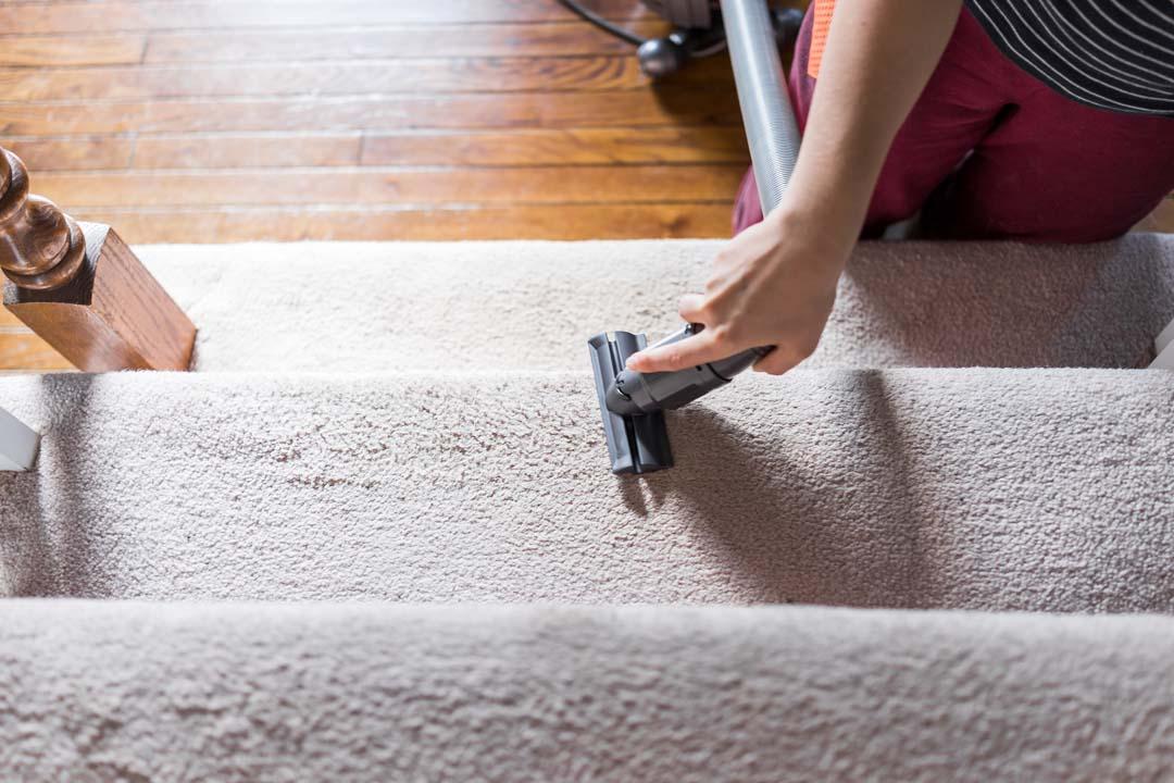 colorado springs carpet cleaners
