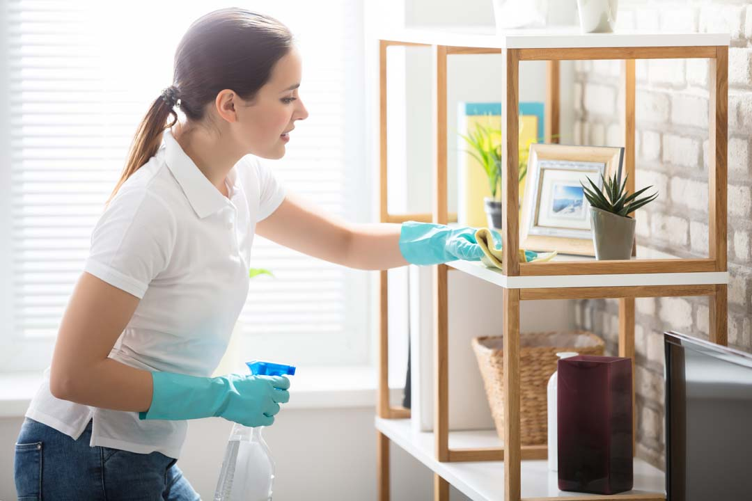 castle pines cleaning services