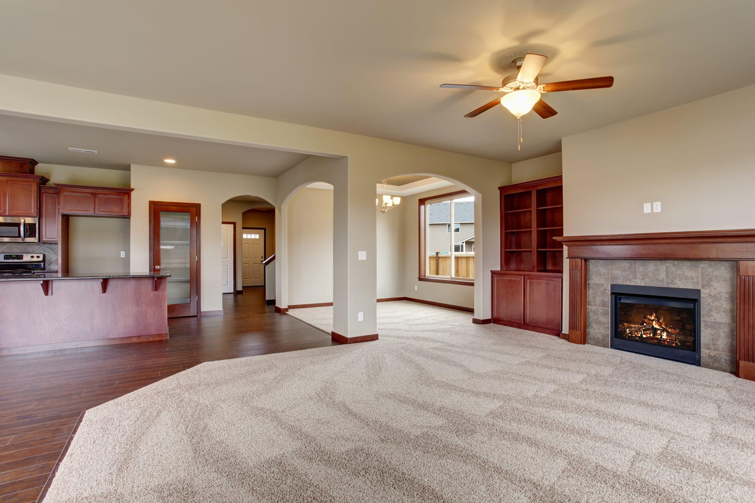 carpet cleaning colorado