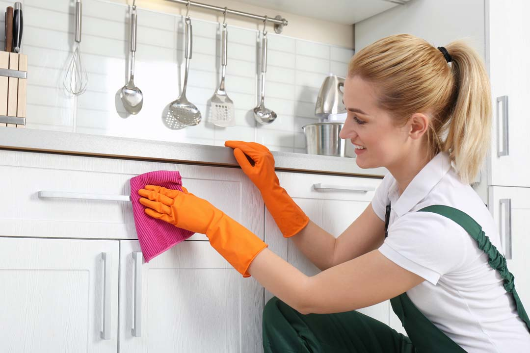 highlands ranch house cleaning