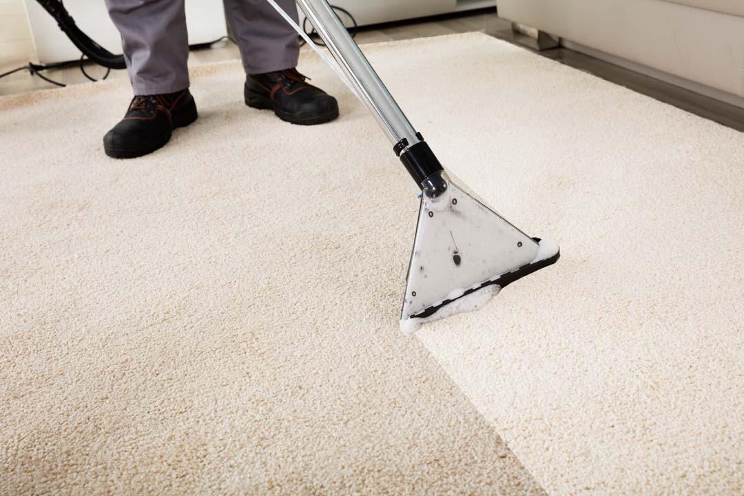 carpet cleaning parker co